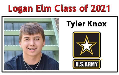Tyler Knox